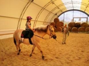 pferde geschäft memmingen